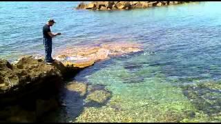 """getlinkyoutube.com-Pesca del polipo con la """"purpara"""" santa Maria di Castellabate (SA) Italy."""