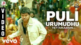 Vettaikaaran - Puli Urumudhu Video   Vijay