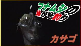 getlinkyoutube.com-フナムシの泳がせ釣りは喰いが良い!捕獲の仕方(釣り中に地震がキター)