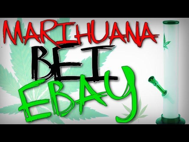 Ebay-Kuriositäten | unglaubliche Auktionen
