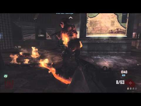 Black Ops 2 Zombies: Easter Egg Perk! (Quick Revive Pro)