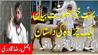 Peer Ajmal Raza Qadri Sahab