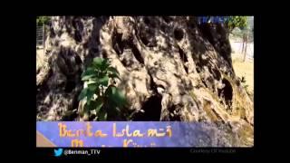 getlinkyoutube.com-Berita Islami Masa Kini - Rayuan-Rayuan Setan Ketika Ajal Menjemput. 31 10 2014