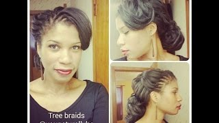 Tree Braids Tutorial Part 4: Maintenance and Cleansing