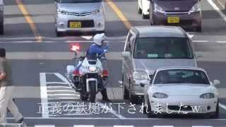 白バイ 緊急走行 取締り!待ち伏せ型の交通機動隊に信号無視で捕まる違反車の検挙の瞬間!Motorcycle police Traffic Police Force