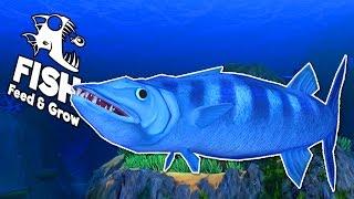 getlinkyoutube.com-CÁ NHỒNG KHỔNG LỒ!!| Feed and Grow: FISH[11]
