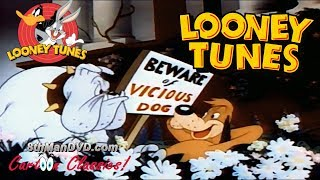 getlinkyoutube.com-LOONEY TUNES (Looney Toons): Ding Dog Daddy (1942)