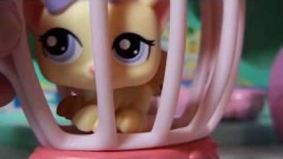 getlinkyoutube.com-Littlest Pet Shop: ACSI: LPS Money Stalker Part 5