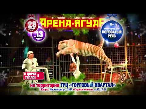 "Цирк-шапито ""Арена-Ягуар"" в Калуге"