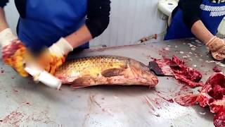 getlinkyoutube.com-SUPER! Разделка рыбы сазана карпа по-атырауски (рынок Коктем) / Cutting Fillet Fish carp in Atyrau