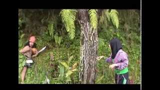 getlinkyoutube.com-Tarsan Kota