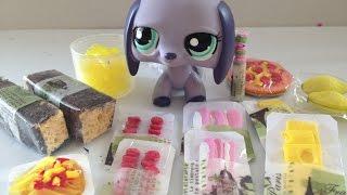 getlinkyoutube.com-DIY: How to make LPS Food