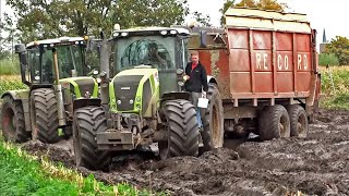 getlinkyoutube.com-Harvesting mais in the mud | Claas Jaguar | Axion | Xerion | New Holland T7070 | NL.