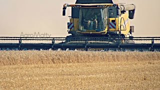 getlinkyoutube.com-Žně/Harvest 2015 Pšenice/Wheat & Mák/Poppy