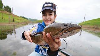 getlinkyoutube.com-กระโดดป่วน ขนาดนี้จะทนไหวหรอ แม่ปลาช่อน LEOPARD JUNIOR45