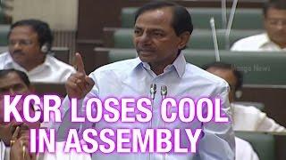 getlinkyoutube.com-CM KCR asks TDP Leaders to SHUT UP in Telangana Assembly