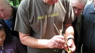 getlinkyoutube.com-Přelarvování včelích matek / How to rear queens/ 2.6.2012 VUVČ Dol