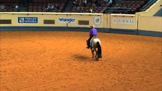 getlinkyoutube.com-VS FLATLINE - World Champion in Two Year Old Western Pleasure