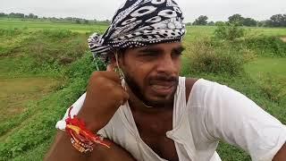टायलेट एक व्यथा॥फिल्म by अविनाश तिवारी