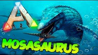 getlinkyoutube.com-CAPTURANDO NUEVO MOSASAURUS !! MOSASAURUS TAMEADO !! ARK SURVIVAL EVOLVED Makigames