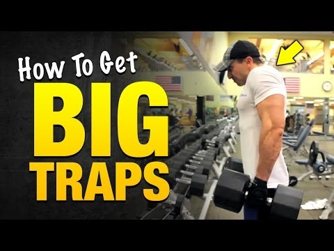 Big Traps: Crazy Trap Workouts For Explosive Muscle Growth @WeightGainNet
