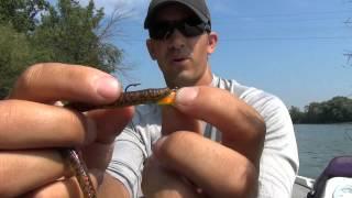 getlinkyoutube.com-How to Rig a Jighead Weedless