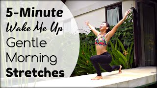 5-Minute Morning Stretches to Power Your Day