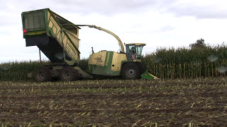 getlinkyoutube.com-Maishakselen 10-10-2012. Harvesting Maize with a Krone Big X Cargo