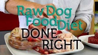 getlinkyoutube.com-How To Do the Raw Dog Food Diet Right