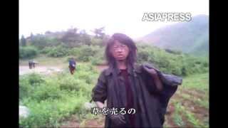 getlinkyoutube.com-[アジアプレス 北朝鮮内部取材1]飢える23歳の女性ホームレス...