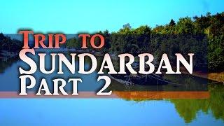 getlinkyoutube.com-Inside Sundarban, Dudhmukhi canal, Boat tour. P2