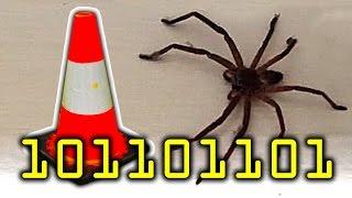 getlinkyoutube.com-Million Dollar Giant Spider House Mystery Cone & My Fail Channel On YouTube Thanks!