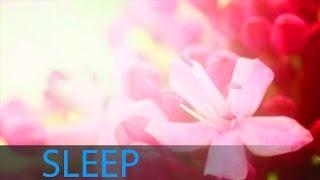 getlinkyoutube.com-8 Hour Deep Sleep Music Inner Peace: Help Beat Insomnia, Delta Waves, Sleeping Music ☯160