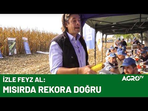 Feyz Çiftliğinde Mısır Tarla Günü / AGRO TV