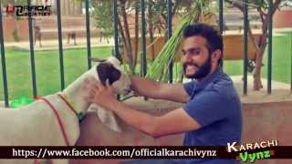 getlinkyoutube.com-Things Not To Do On BAKRA EID By Karachi Vynz Official