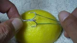 getlinkyoutube.com-体に刺さった釣り針の抜き方 ストリング・ヤンク・テクニック