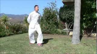 getlinkyoutube.com-Ejercicio Chi Kung Caminar Yang