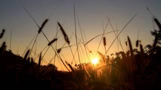 ทดลองถ่ายพระอาทิตย์ขึ้น