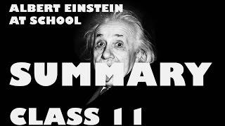 Albert Einstein at School by Patrick Pringle  Hindi Summary