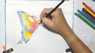getlinkyoutube.com-Painting a Watercolor Pencils Butterfly by Dion Dior