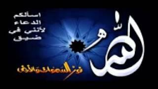 getlinkyoutube.com-الشيخ عبد الحميد كشك - أجمل قصة قد سمعتها