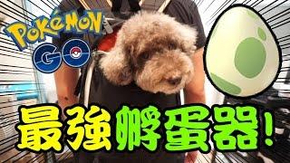 Pokemon Go#23: 課金! 地上最強「POKEMON孵蛋器」!