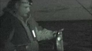getlinkyoutube.com-Night Walleye Fishing