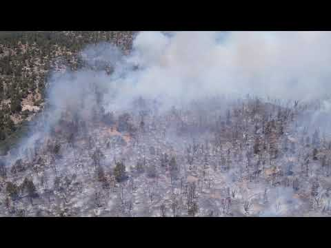 UAS View of  burned area