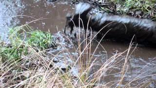 getlinkyoutube.com-High heel over knee boots romp in the mud