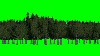 getlinkyoutube.com-forest green screen - background green and blue - free green screen