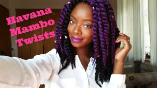 getlinkyoutube.com-Diy 12 inch Havana Mambo Crochet Twists {purple & black}