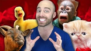 getlinkyoutube.com-10 ADORABLE ANIMALS that can KILL YOU!