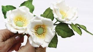 getlinkyoutube.com-Как сделать красивые цветы из мастики (Beautiful flowers from mastic)