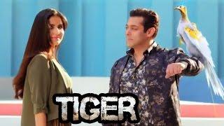 Salman Khan & Katrina Kaif's ROMANCE VIDEO From Tiger Zinda Hai | Viral
